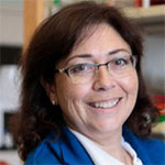 Iruela-Arispe Named Co-Leader of the  Tumor Environment and Metastasis Research Program